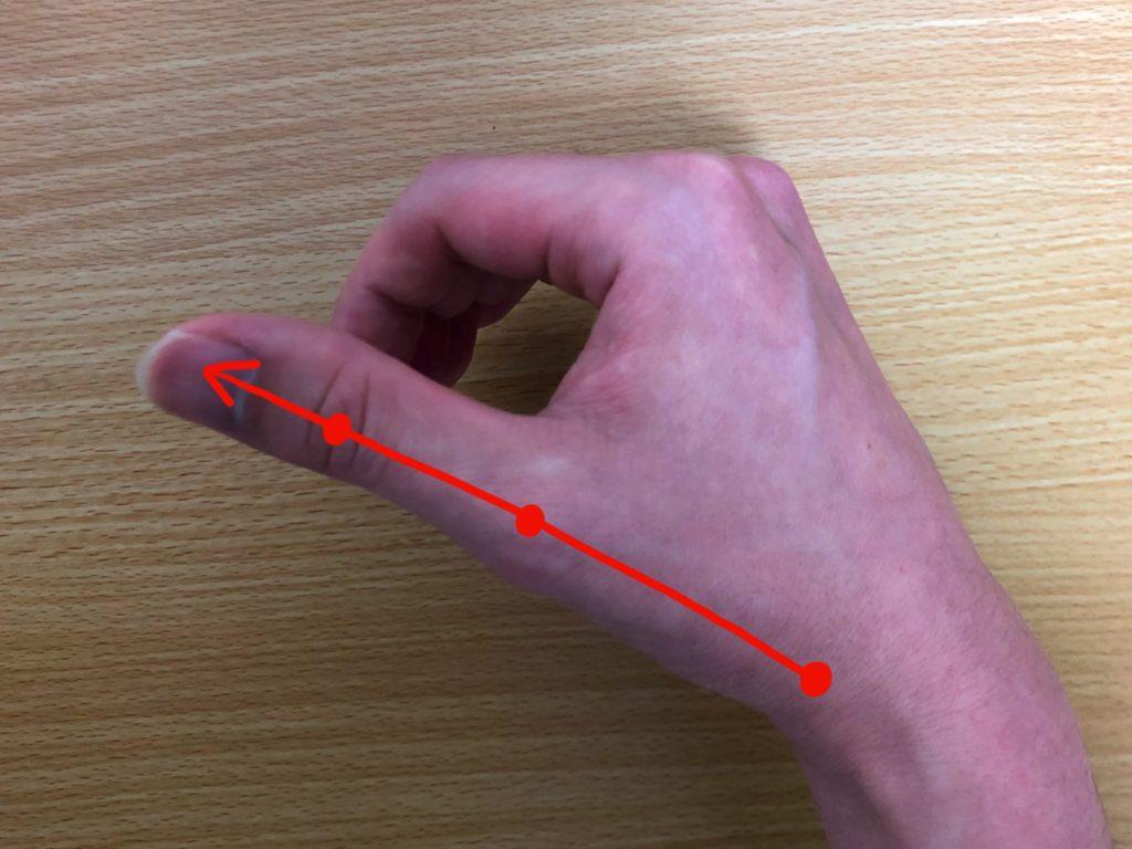 親指は付け根から曲げずに動かす